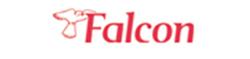 Falcon Holidays