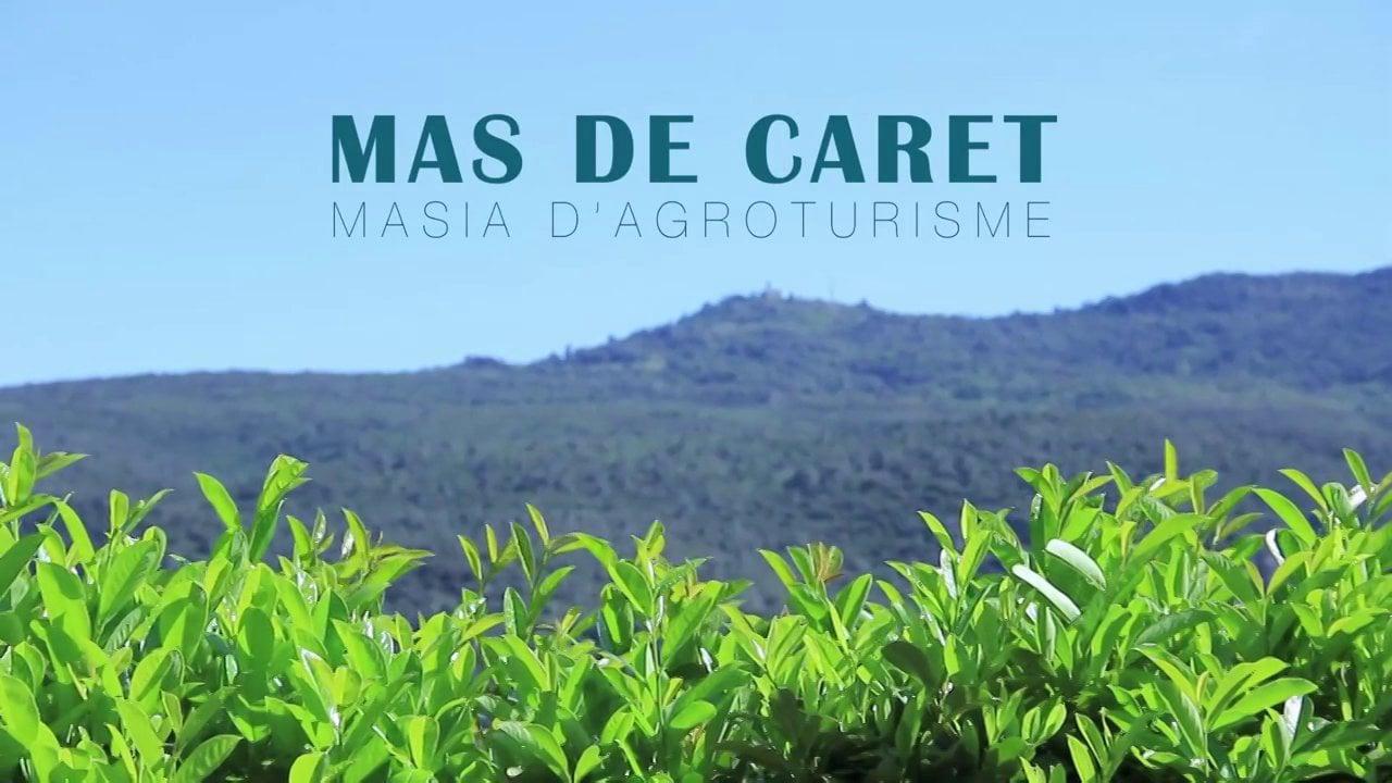 MAS DE CARET